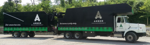 A team of certified expert arborists serving Madison Co., St. Clair Co, and the St. Louis metro area.
